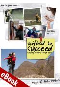 Gifted to Succeed eBook